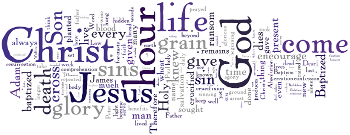 Palmarum 2012 Wordle
